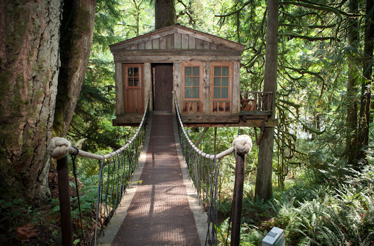 boomhut inspiratie treehouse point 2