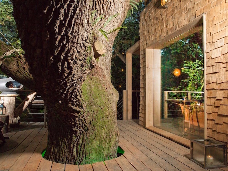 boomhut inspiratie woodsmans treehouse 2