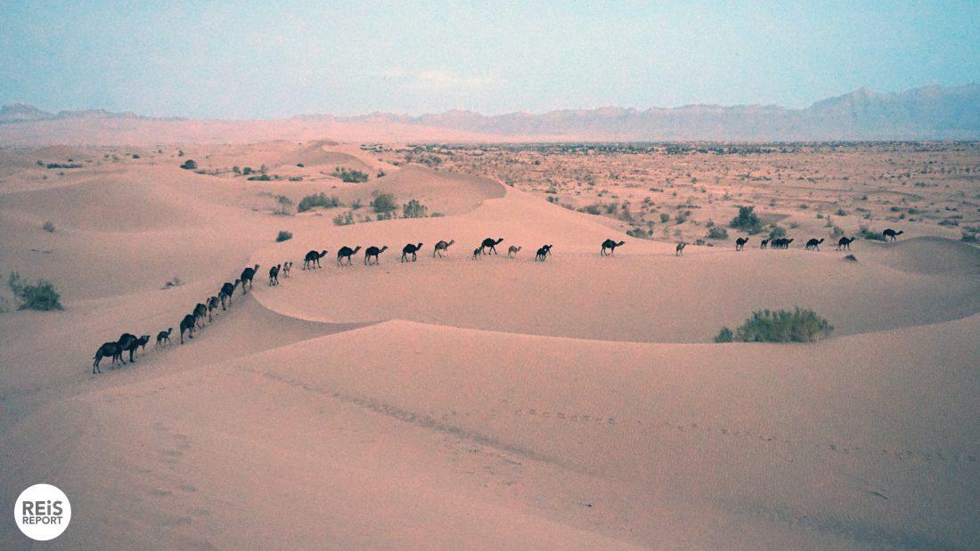 garmeh woestijn iran kamperen