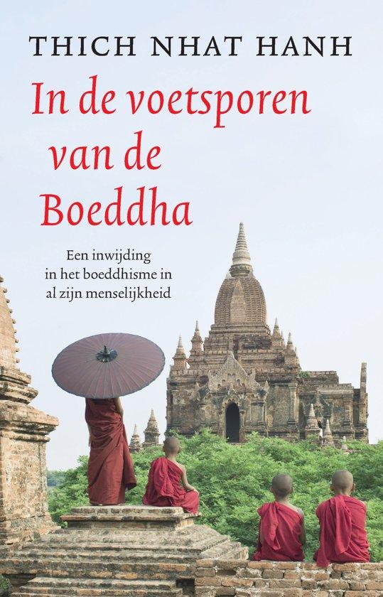 Boek: In de voetsporen van de Boeddha cover