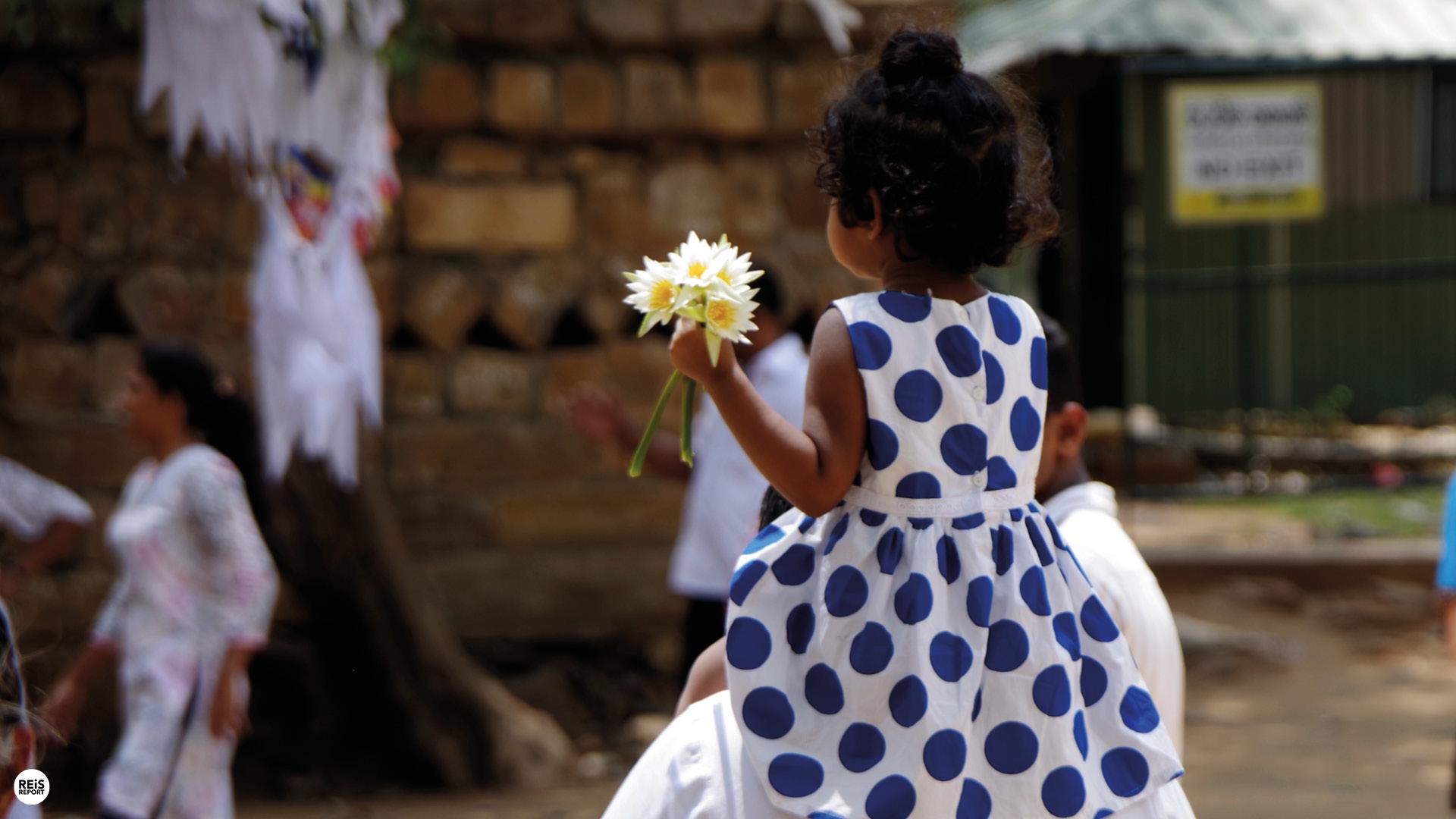 Anuradhapura tree