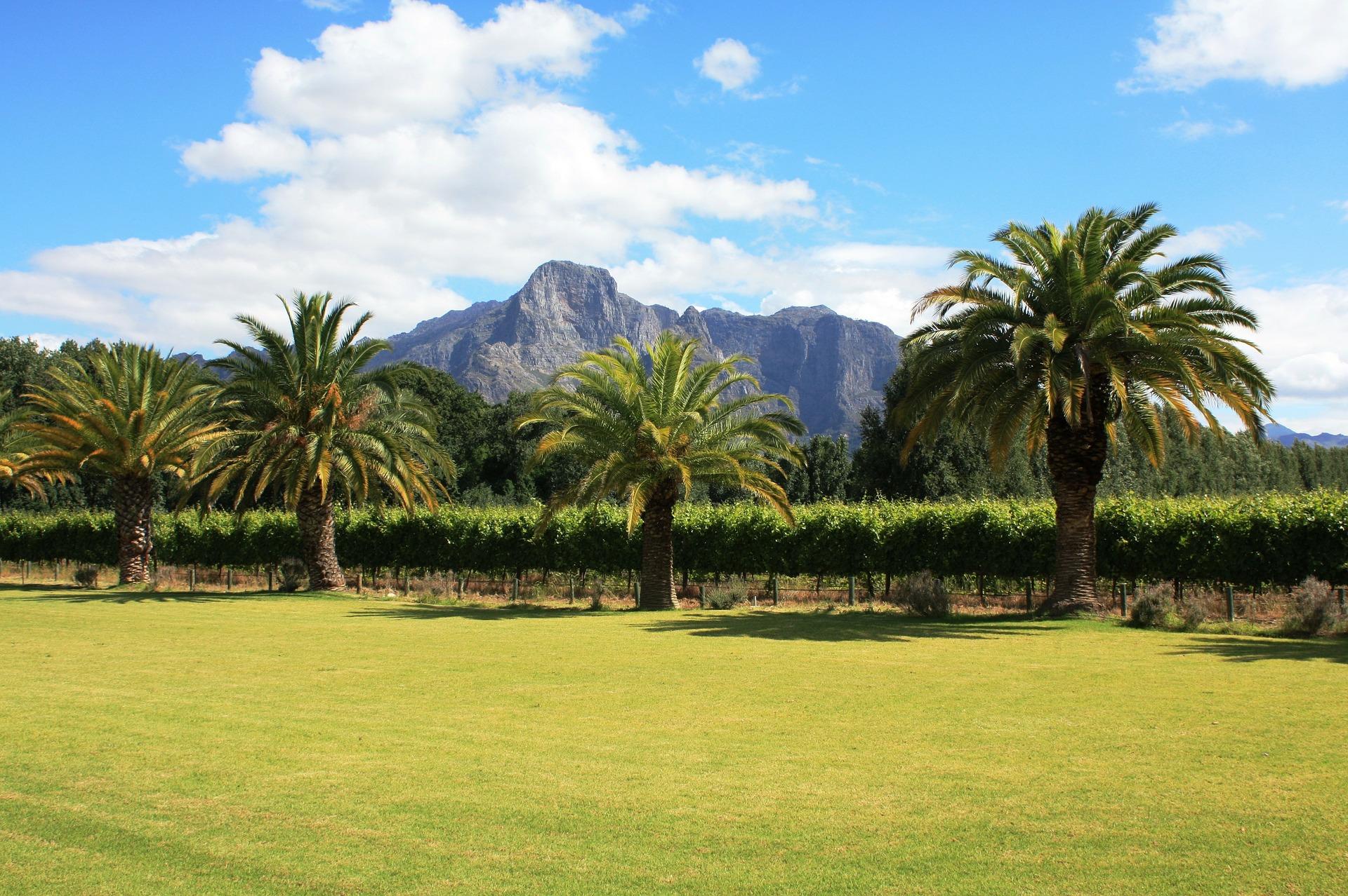 Franschhoek Zuid-Afrika