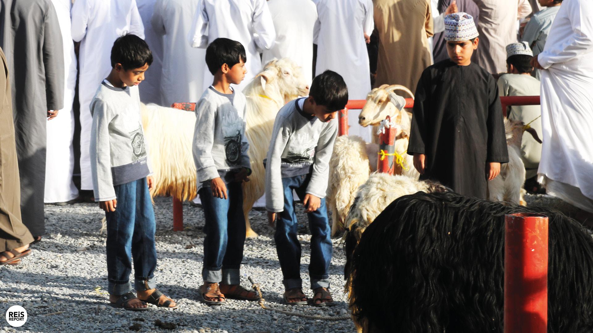 nizwa geitenmarkt oman