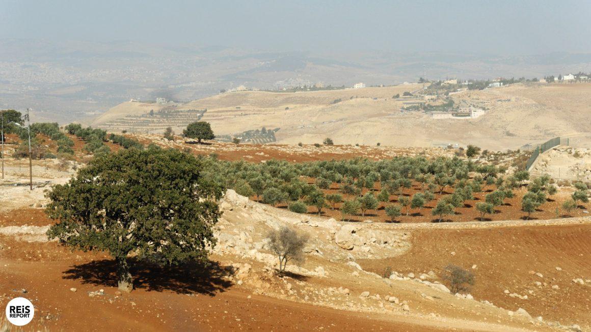op de boerderij in jordanië