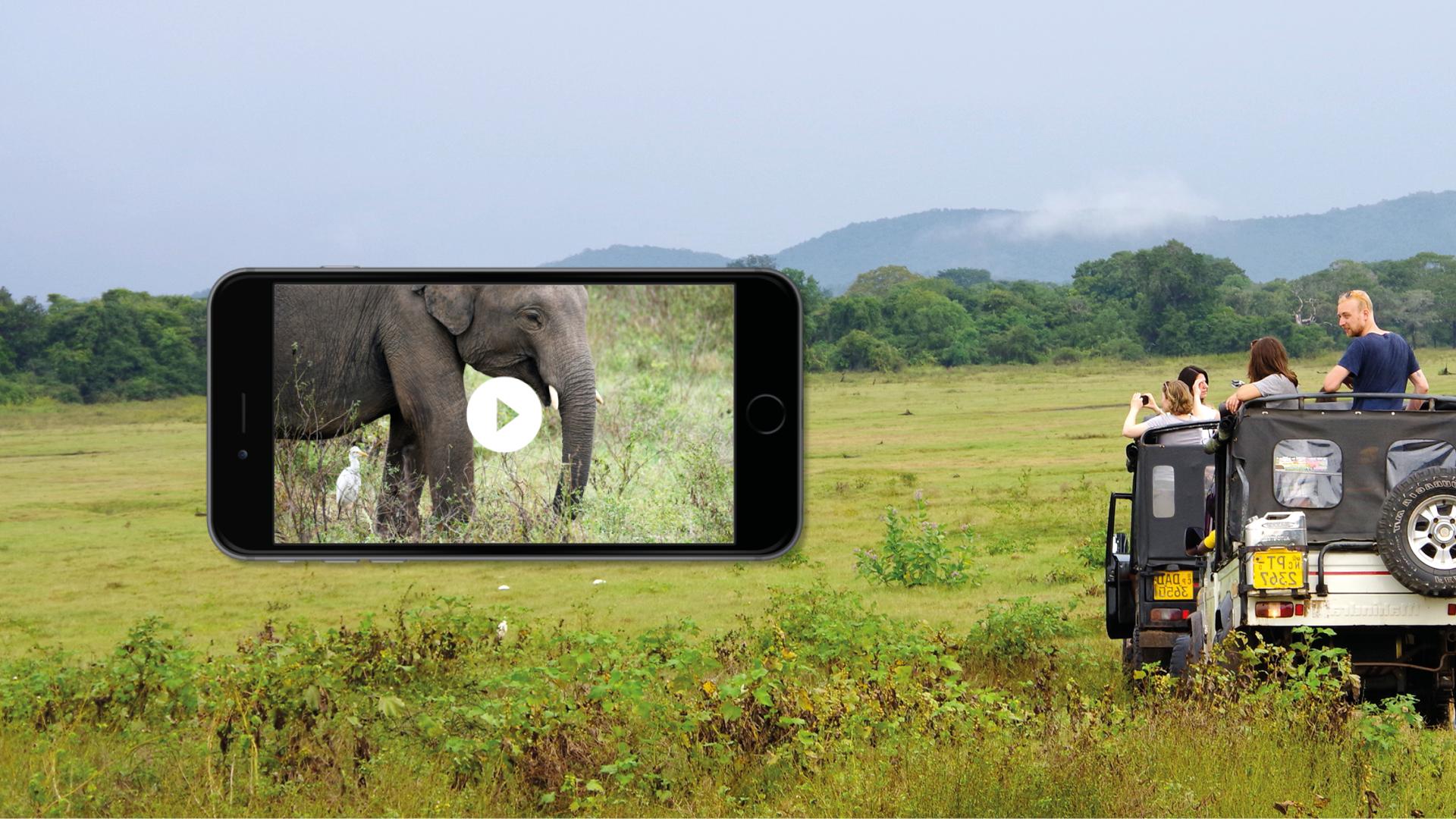 reis app video