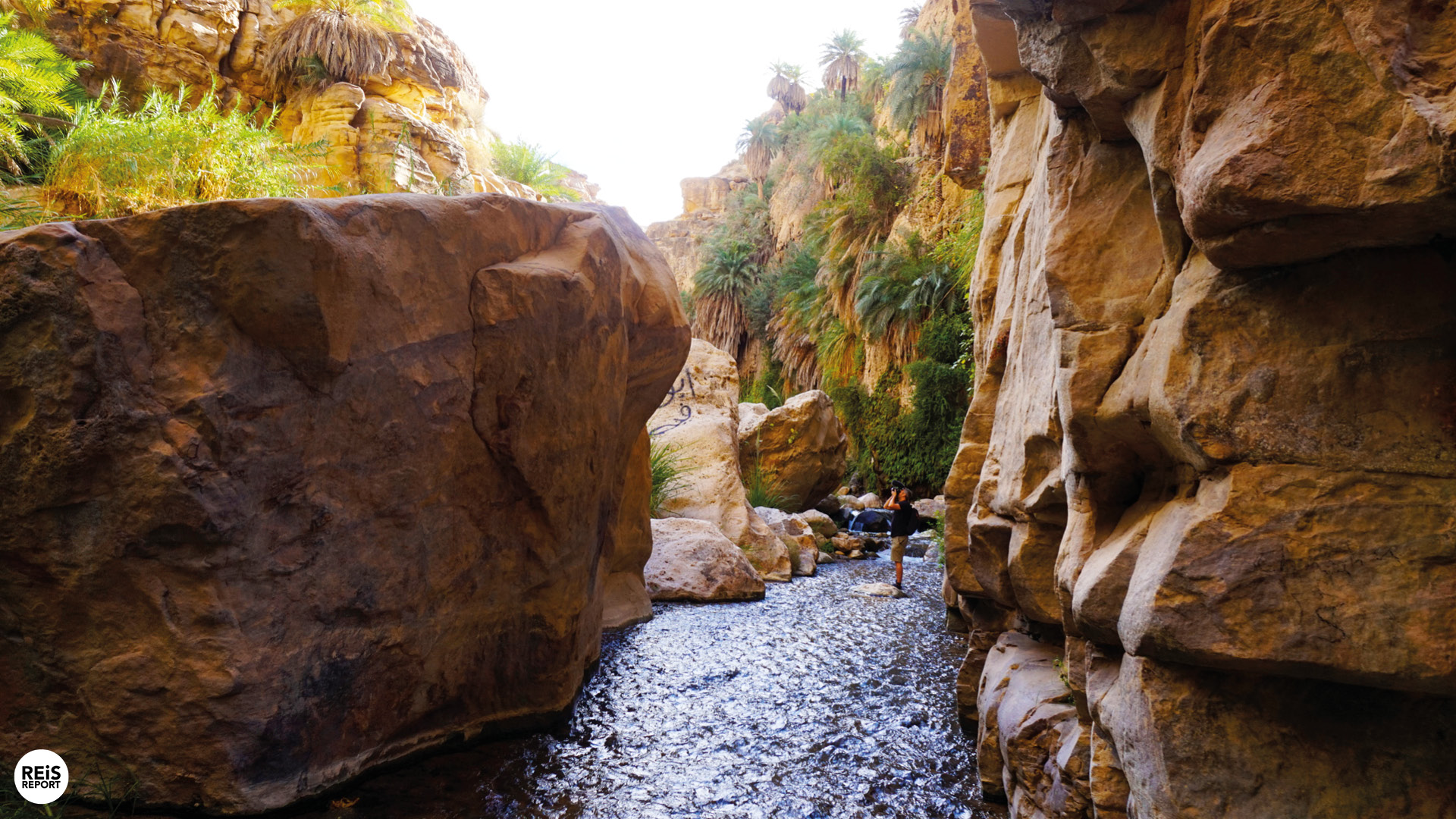Wandeling met gids door het warme water van Wadi Bin Hammad cover