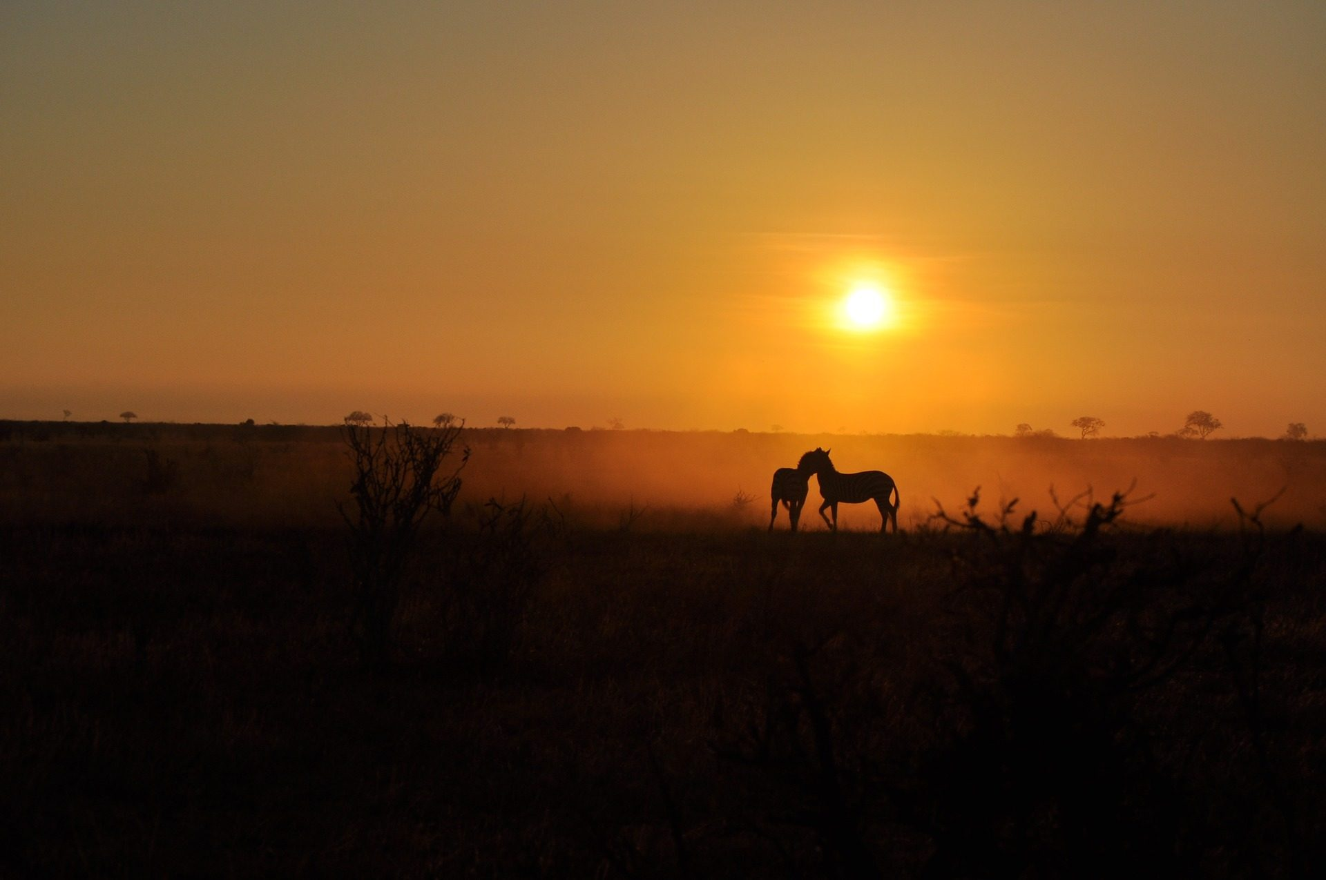 rondreis-kenia