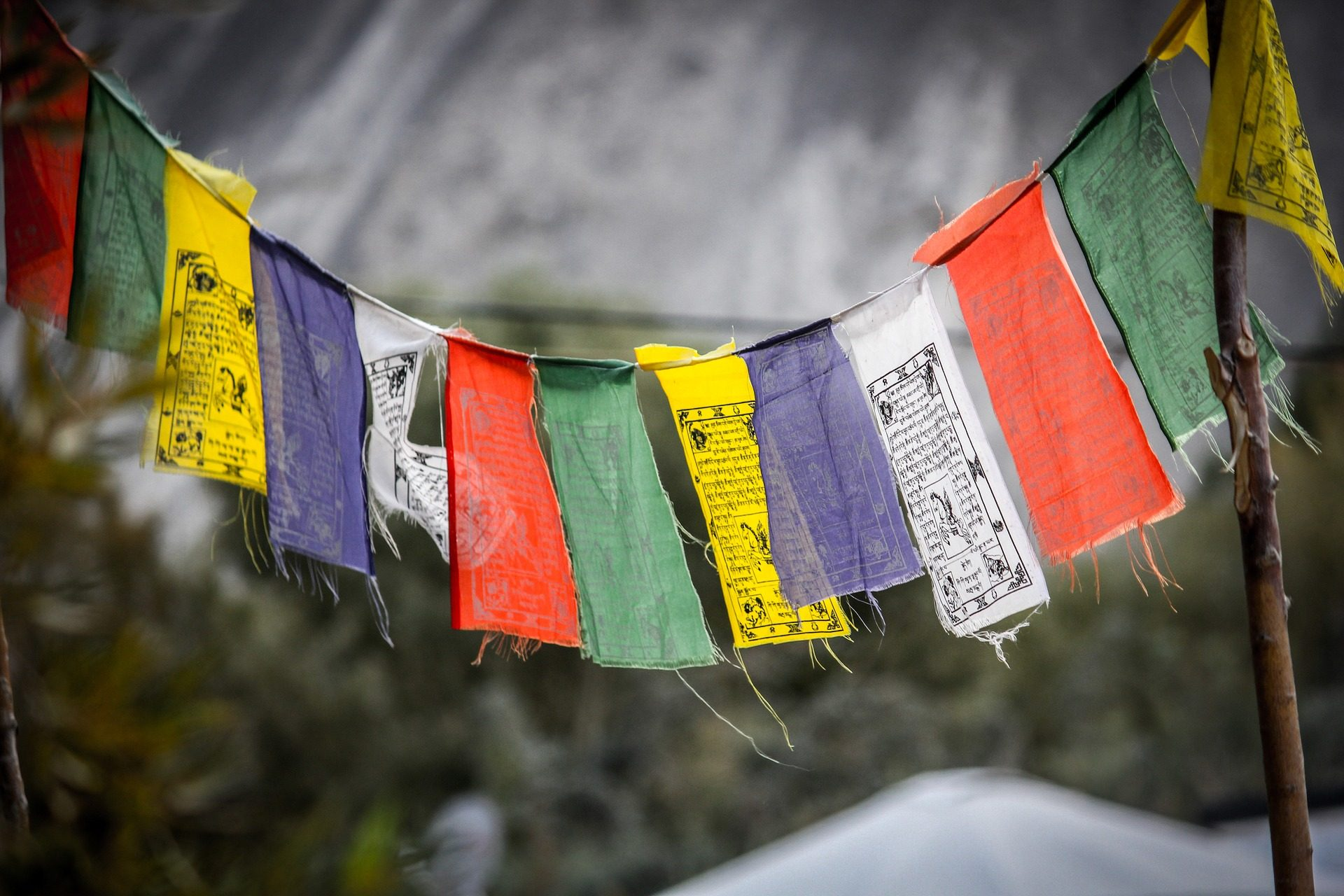 rondreis-ladakh