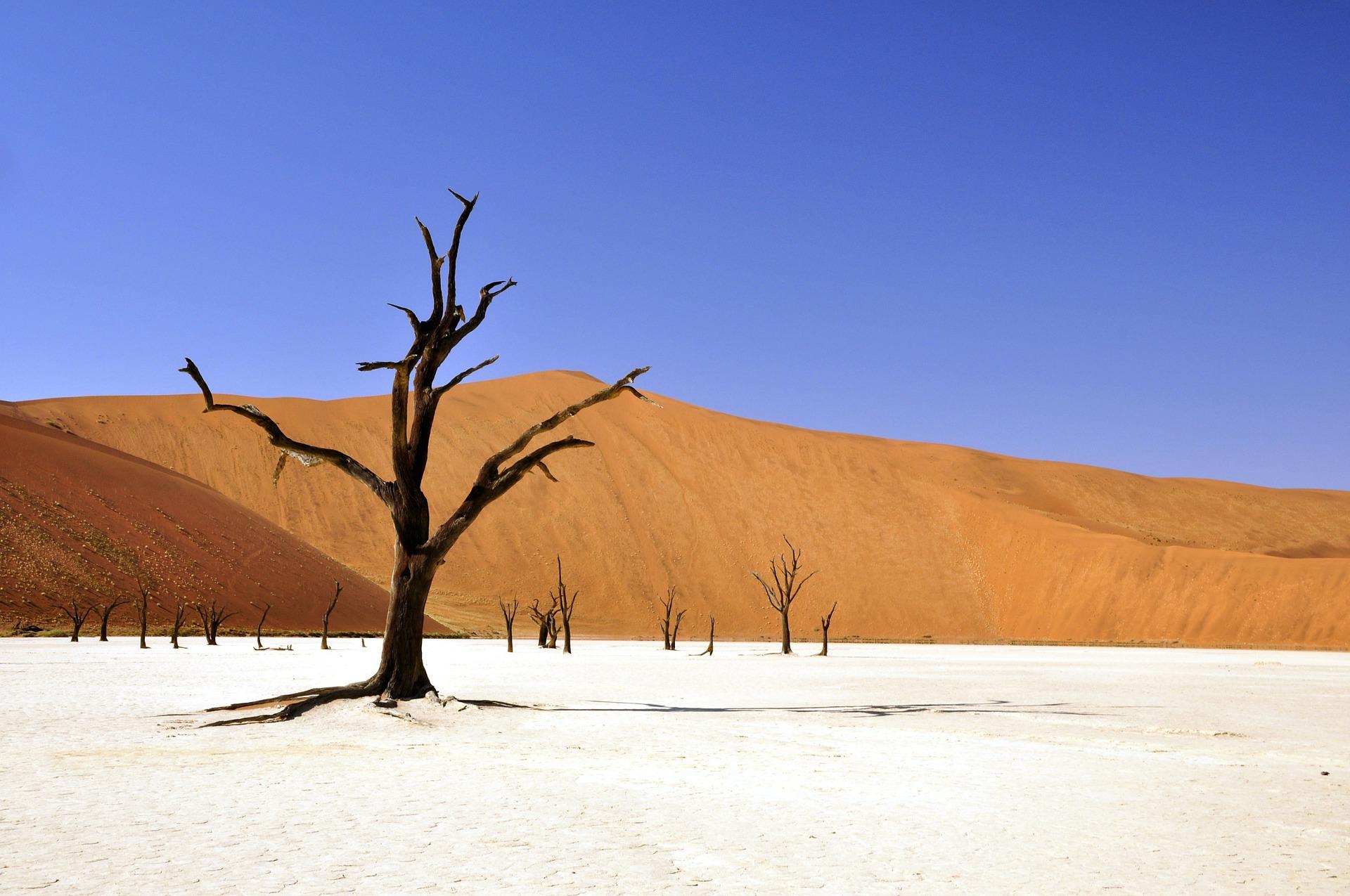 rondreis-namibie