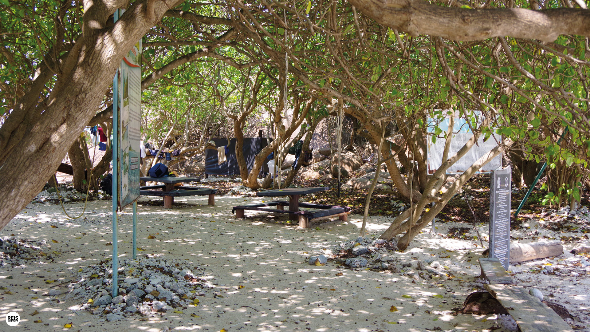 pigeon island sri lanka