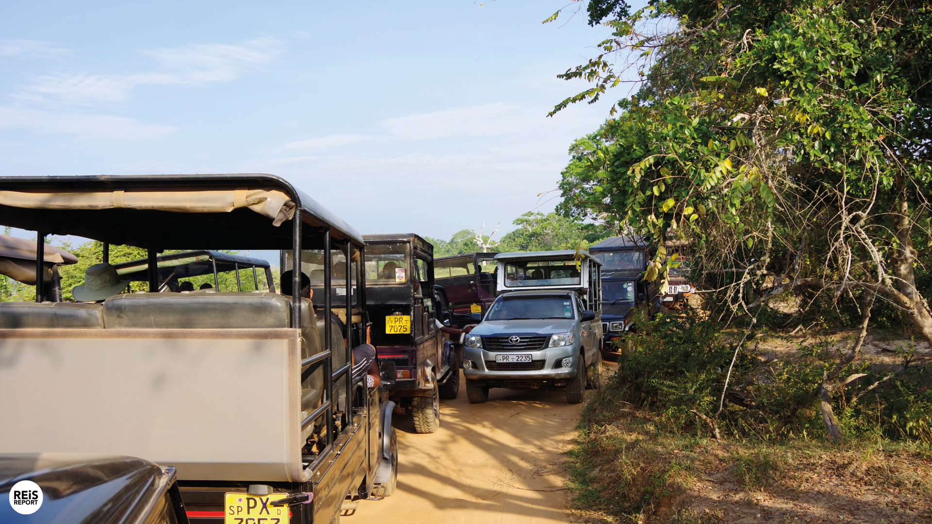 yala national park sri lanka tour