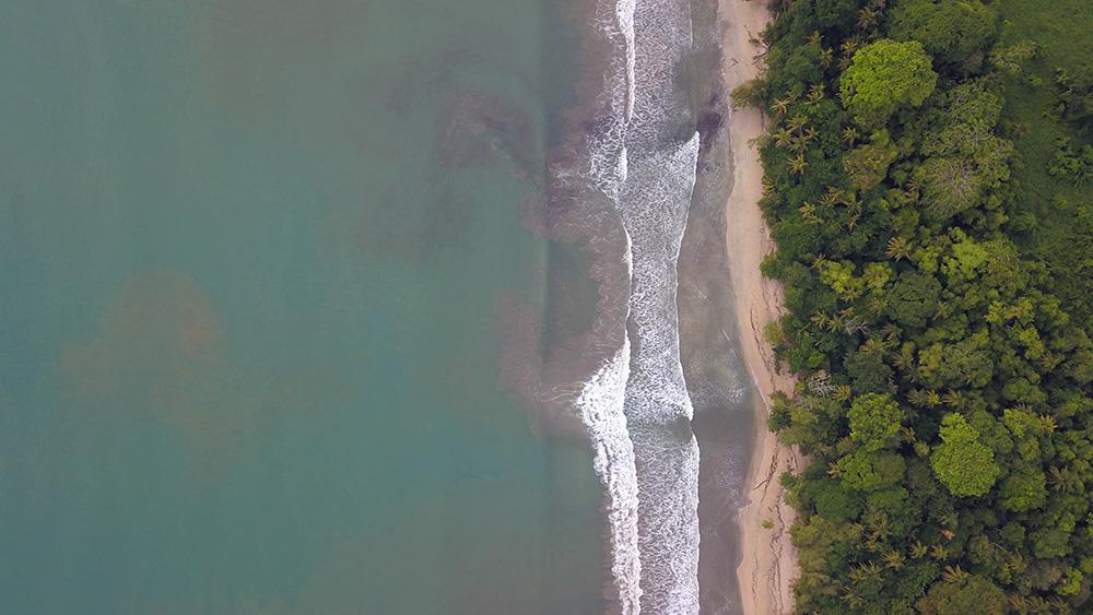 Drake Costa Rica