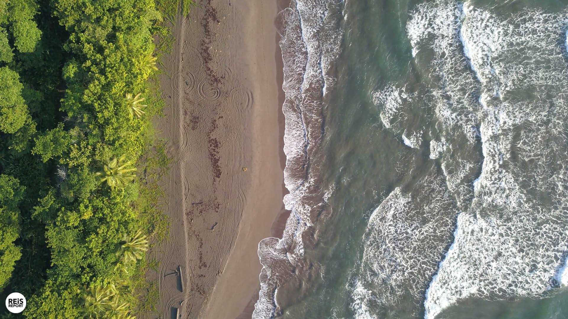 tortuguero costa rica strand