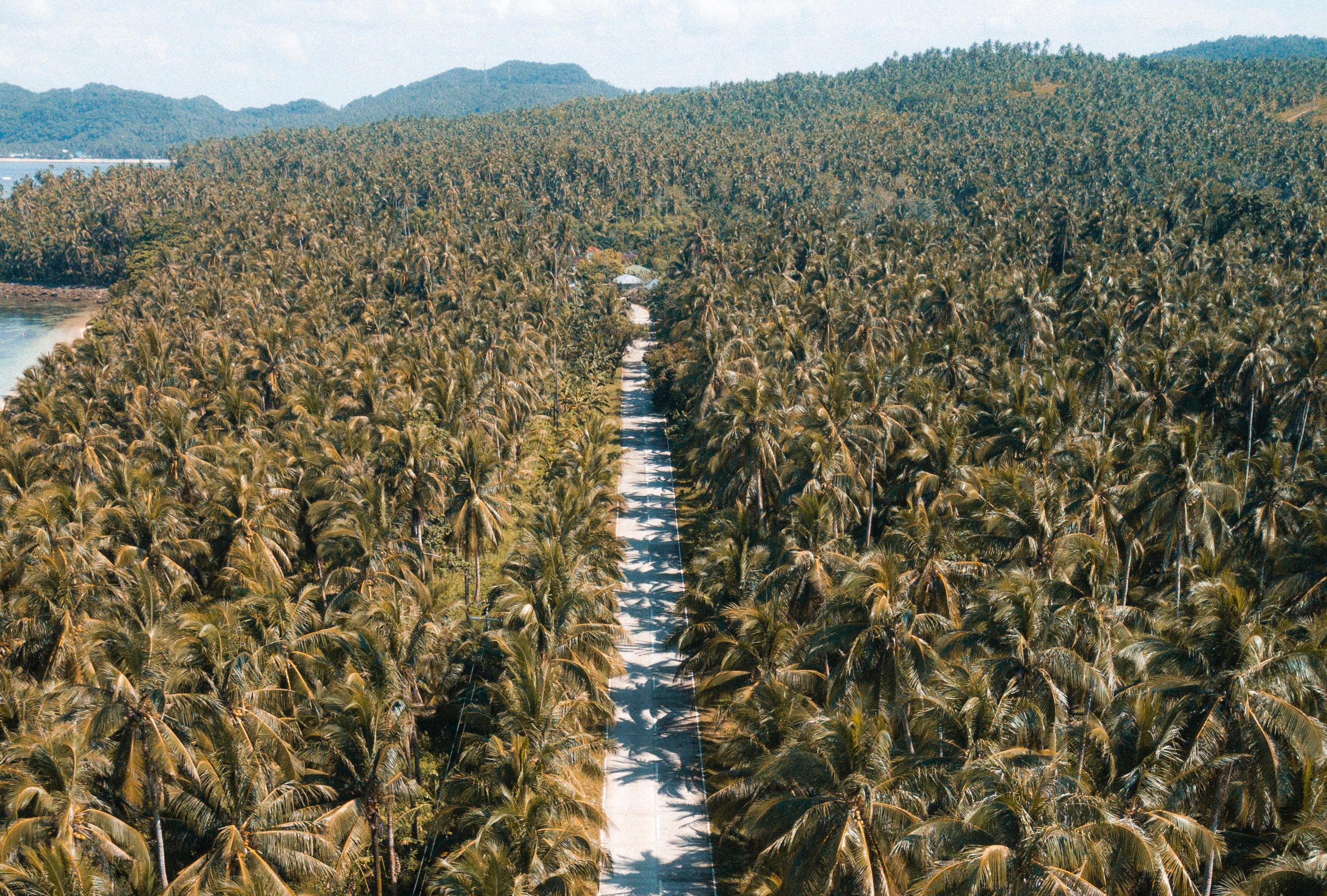 Mindoro Filippijnen