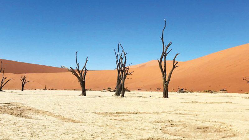 namibie hoogtepunten