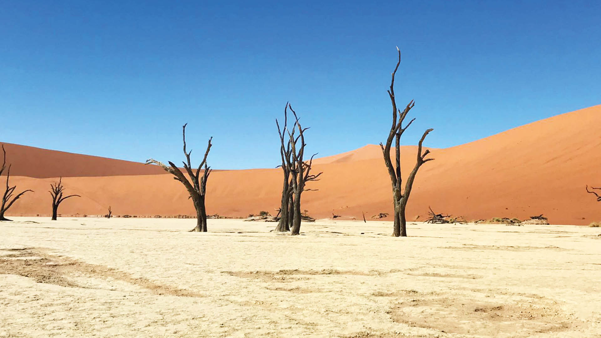 namibie hoogtepunten rondreis