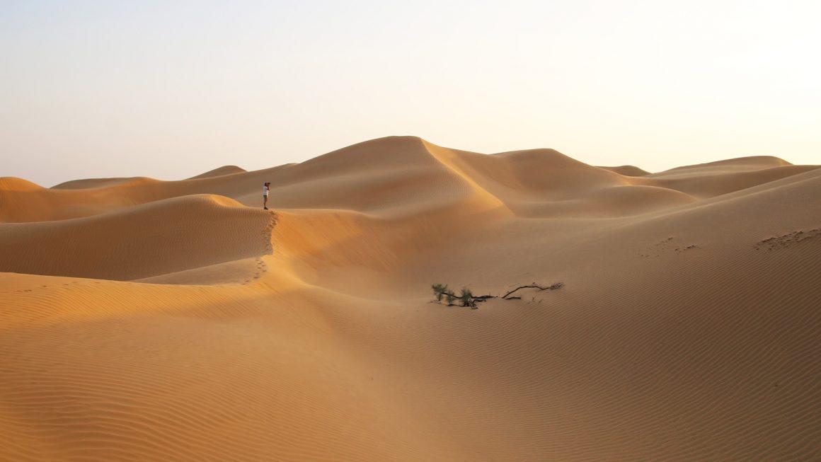 Empty Quarter woestijn, Oman