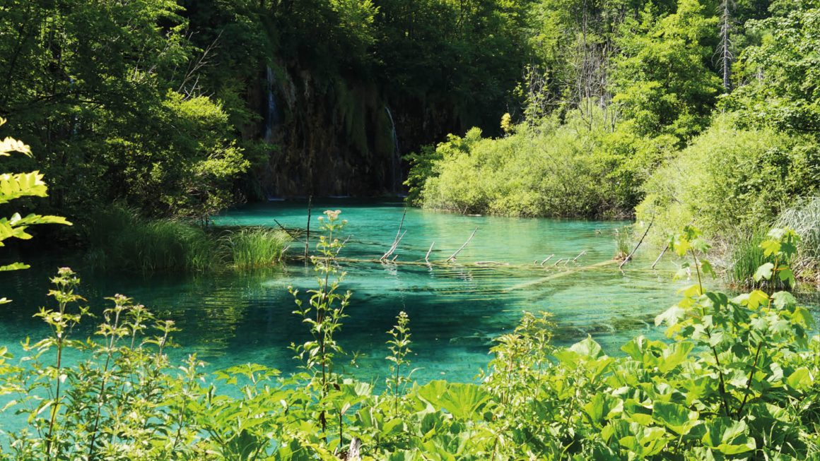 Plitvice Meren nationaal park, Kroatië