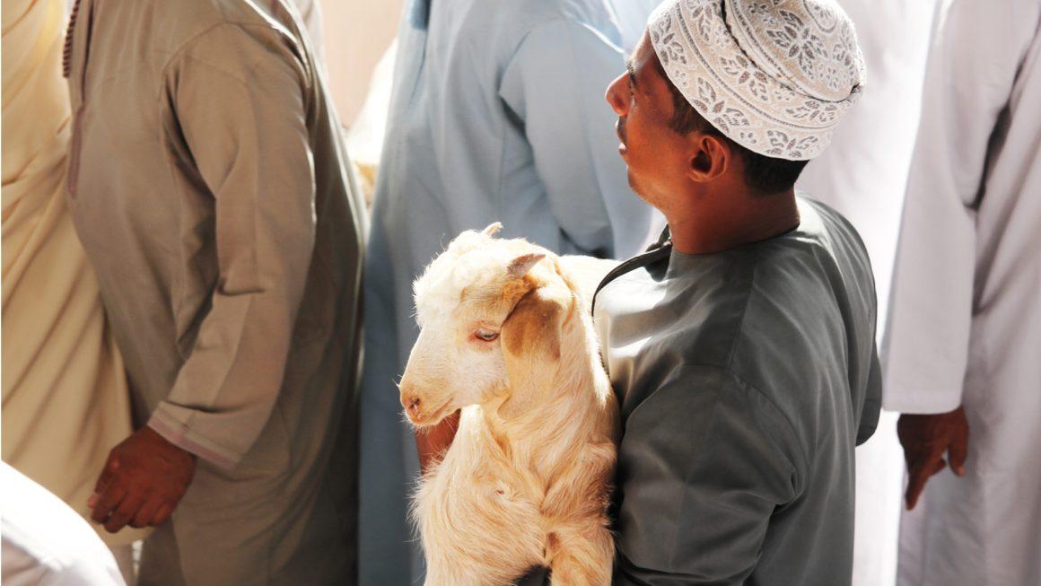 Nizwa en de geitenmarkt, Oman