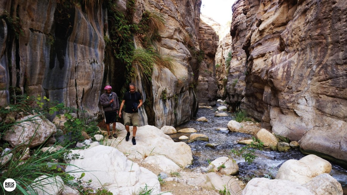 Wadi Bin Hammad, Jordanië
