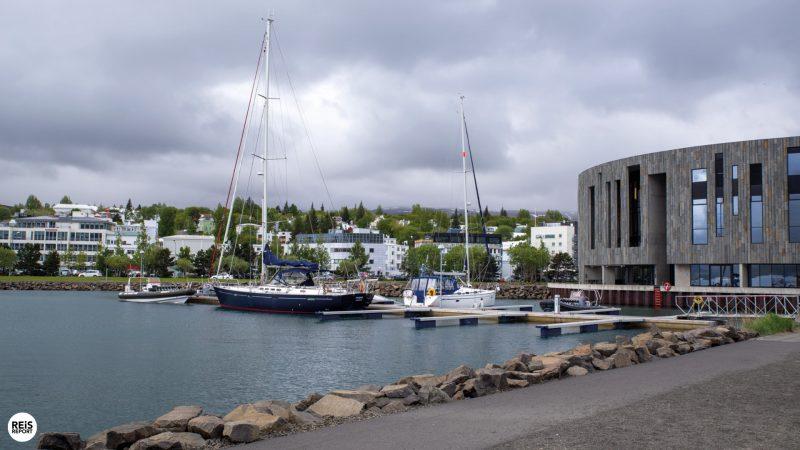 akureyri-ijsland-walvissen