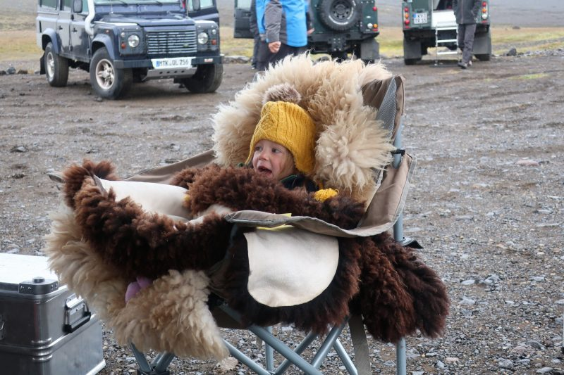 schapenvacht ijsland