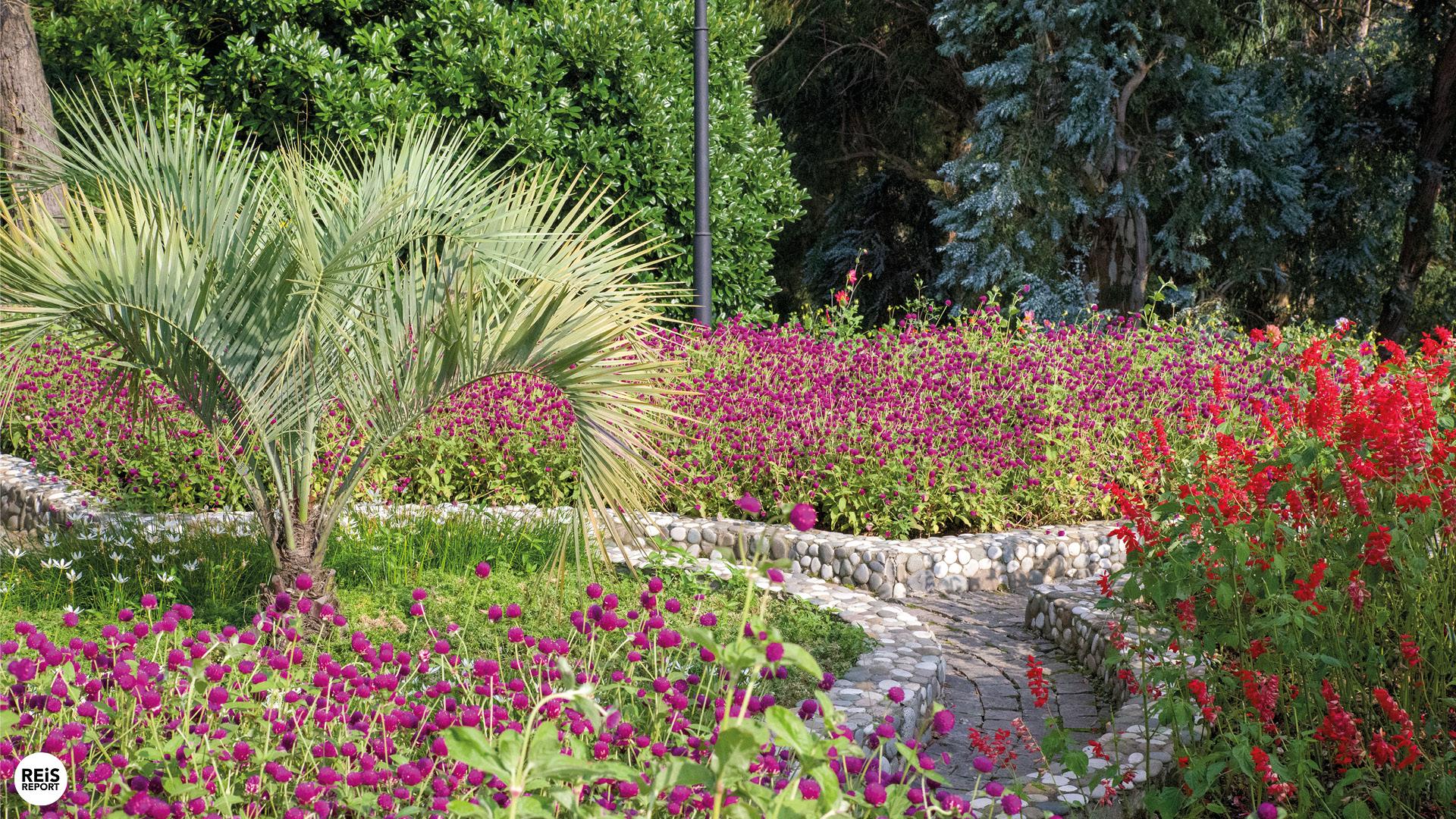 botanische-tuin-georgie-batumi