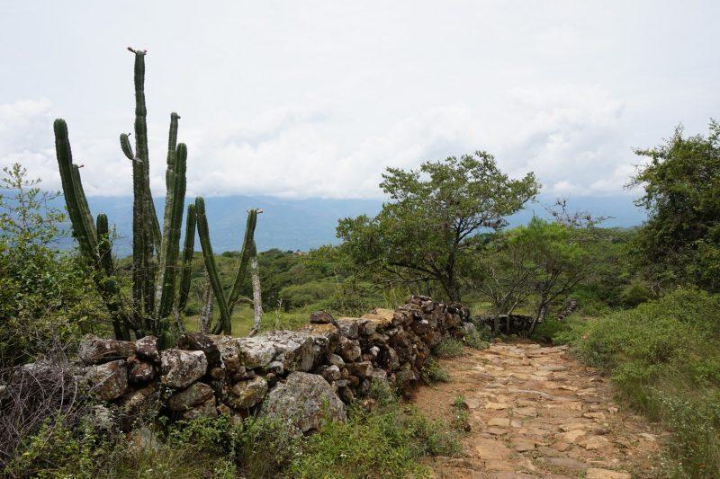 el-camino-real-colombia