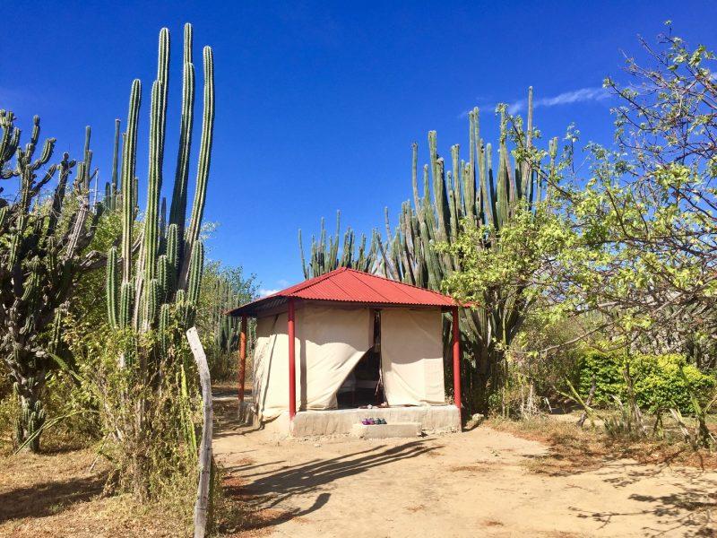 tatacao-woestijn-colombia