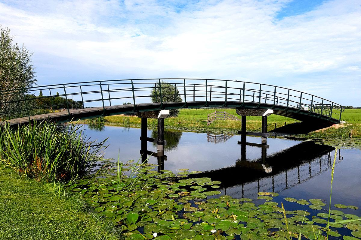 boerenkaas-fietsroute-de-jong-weipoort