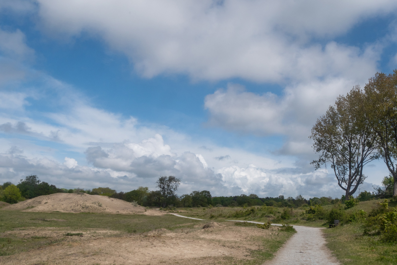 duinen-van-oostvoorne-duinen-wandeling